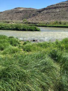 Gunnison River, Rattlesnake Gulch