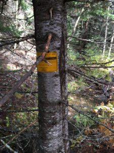 Federal Mining Claim corner marker